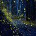 テラヘルツ量子エネルギーの照射